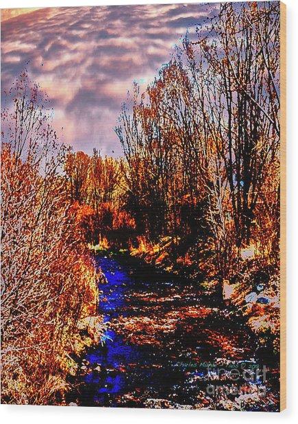 Rio Taos Bosque V Wood Print