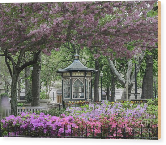 Rittenhouse In Spring Wood Print by Stacey Granger