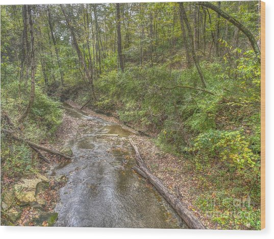 River Flowing Through Pine Quarry Park Wood Print