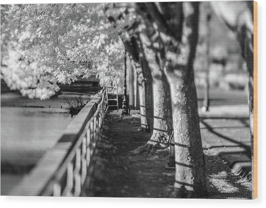 River Lines Wood Print