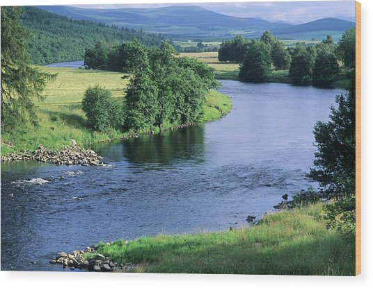 River Spey Near Grantown, Scottish Wood Print by Neil Holmes