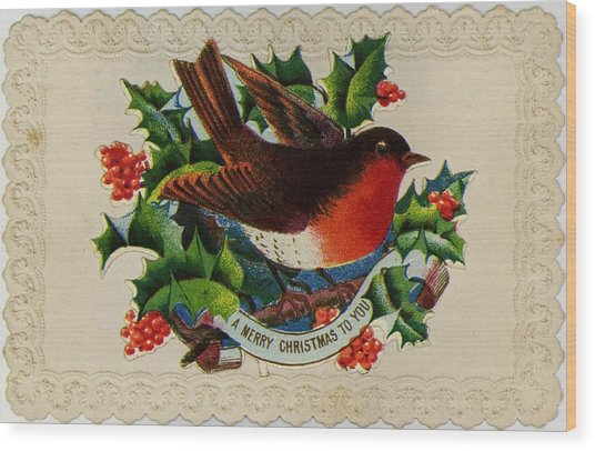 Robin Redbreast Wood Print by Hulton Archive