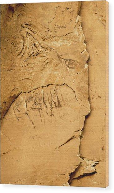 Rock Face Wood Print