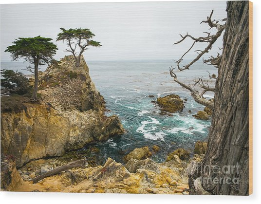 Rocky Cliff And Trees In Carmel Near Wood Print
