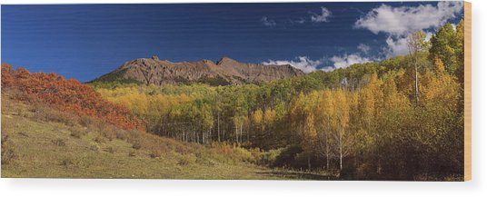 Wood Print featuring the photograph Rocky Mountain Autumn Panorama View by James BO Insogna