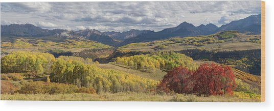 Wood Print featuring the photograph Rocky Mountain Valley Of Color Panoramic View by James BO Insogna