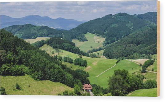 Rolling Hills Of The Black Forest Wood Print