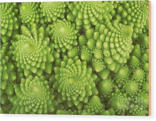 Roman Broccoli Isolated On White Wood Print