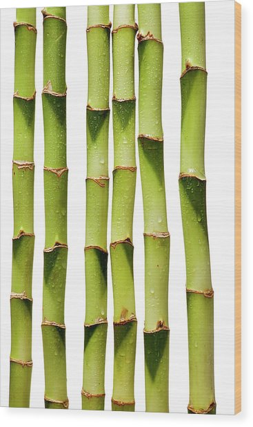 86030ac914a3 Row Of Bamboo Wood Print by Chris Stein
