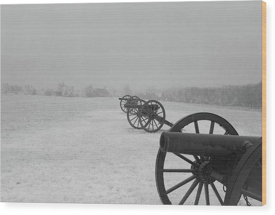 Row Of Cannon Wood Print