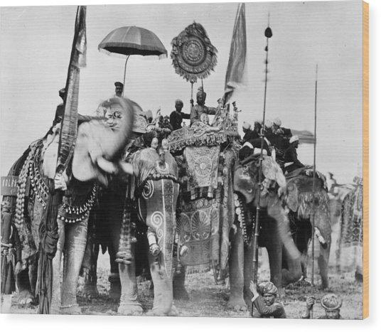Royal Elephants Wood Print by Hulton Archive