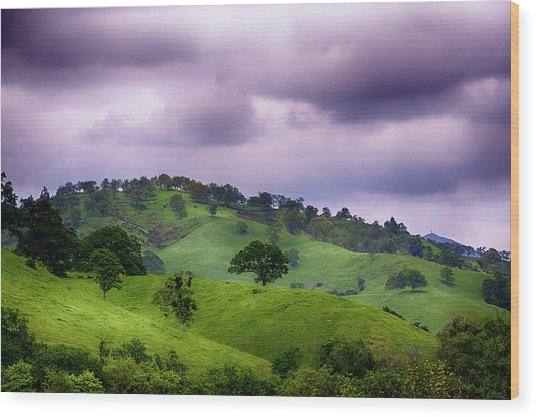 Wood Print featuring the photograph Royal Landscape by Dee Browning
