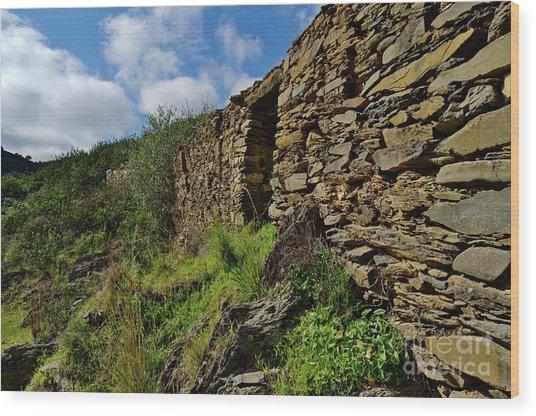 Ruins Of A Schist Cottage In Alentejo Wood Print