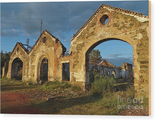 Ruins Of The Abandoned Mine Of Sao Domingos. Portugal Wood Print