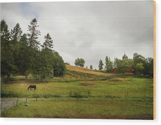Wood Print featuring the photograph Rural Landscape In Trondheim Norway by Whitney Leigh Carlson