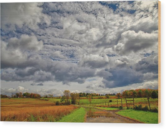 Wood Print featuring the photograph Rural New Paltz Hudson Valley Ny by Susan Candelario