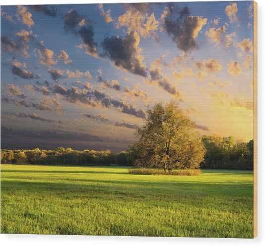 Rural Texas Autumn Sunset Wood Print by Dean Fikar
