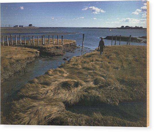 Rye Harbor, New Hampshire Wood Print