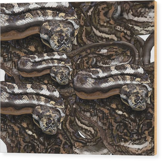 S Is For Snakes Wood Print