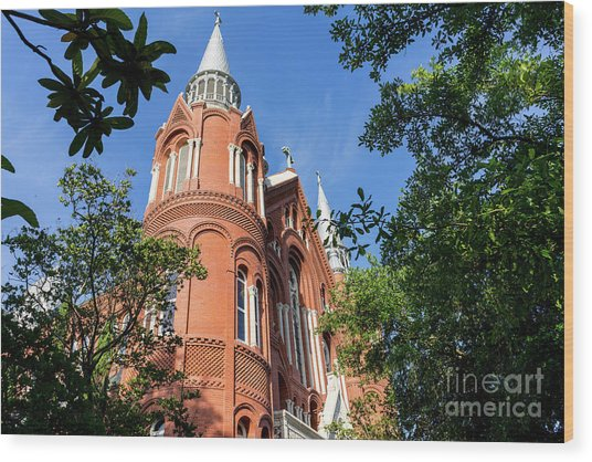 Sacred Heart Cultural Center- Augusta Ga 1 Wood Print
