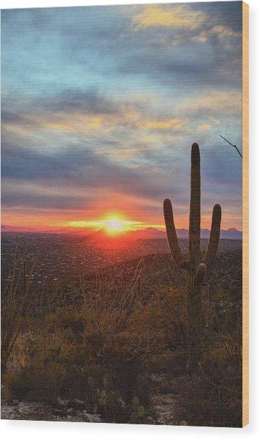 Saguaro Cactus And Tucson At Sunset Wood Print