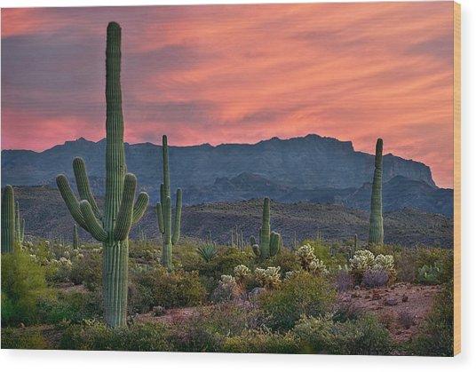 Saguaro Cactus With Arizona Sunset Wood Print