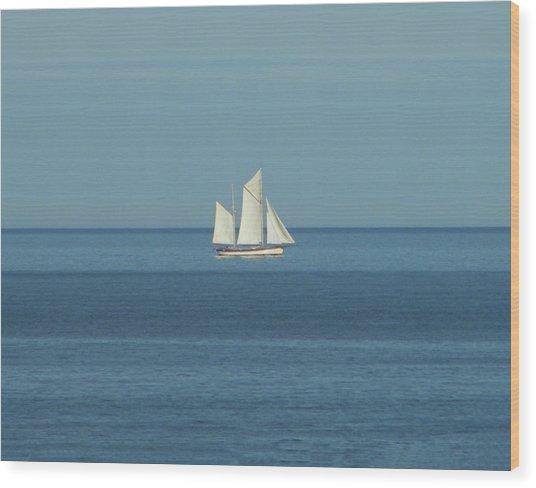 Sail Boat Wood Print