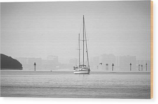 Sail Out Of Sarasota Wood Print