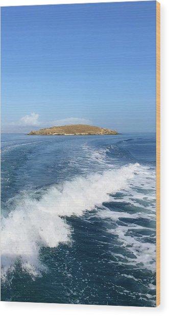 Sailing To Delos Wood Print