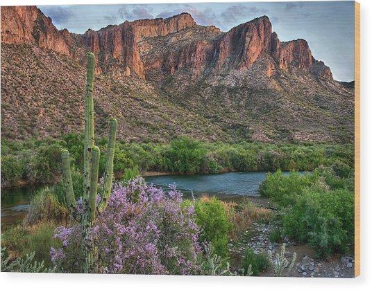 Salt River Saguaro And Ironwood Blooms Wood Print