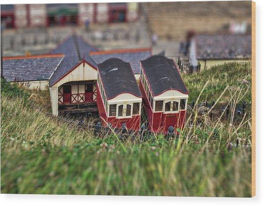 Saltburn Tramway Wood Print