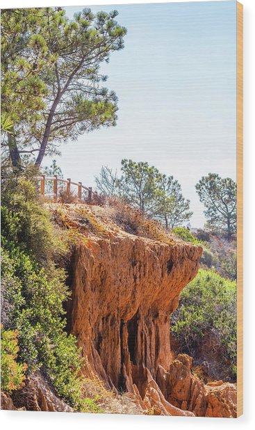 San Diego Landscape Wood Print