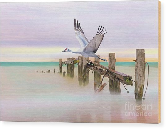 Sandhill Crane And Old Dock Wood Print