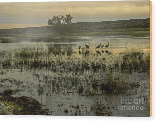 Sandhill Serenity Wood Print