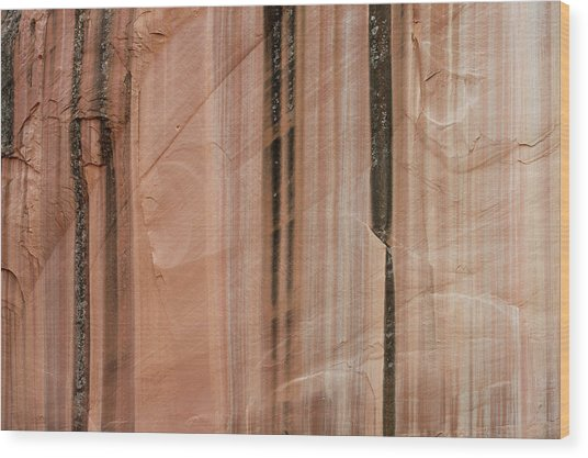 Sandstone Cliff Above Calf Creek Trail Wood Print by William Mullins
