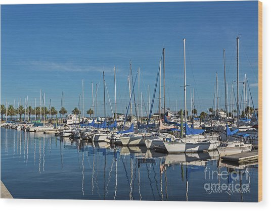 Sanford-marina-6698 Wood Print
