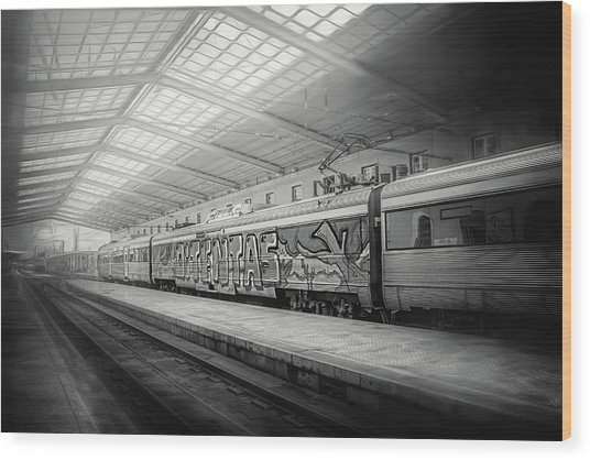 Santa Apolonia Railway Station Lisbon Wood Print