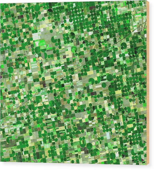 Satellite View Of Crop Circles In Wood Print by Education Images