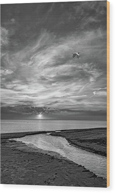 Sauble Beach Sunset - Heading Home Bw Wood Print