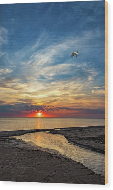 Sauble Beach Sunset - Heading Home Wood Print
