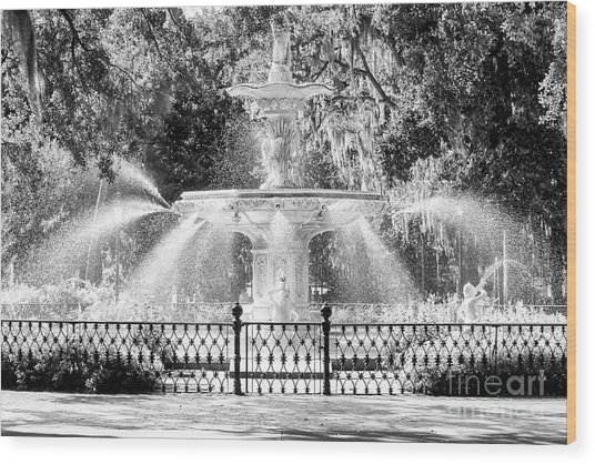 Savannah Forsyth Park Fountain Wood Print