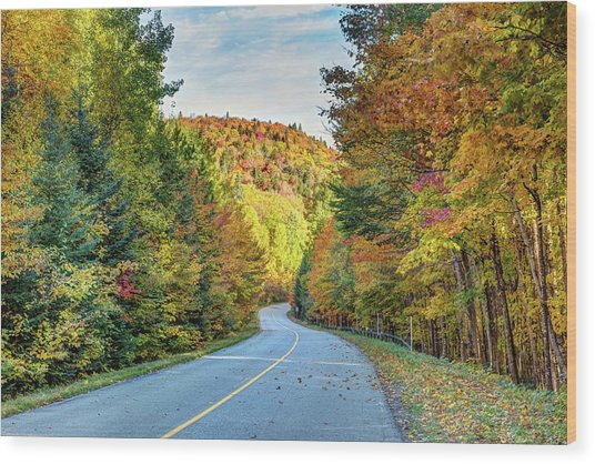 Wood Print featuring the photograph Scenic Drive In Autumn by Pierre Leclerc Photography