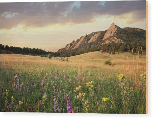 Scenic View Of Meadow And Mountains Wood Print by Seth K. Hughes