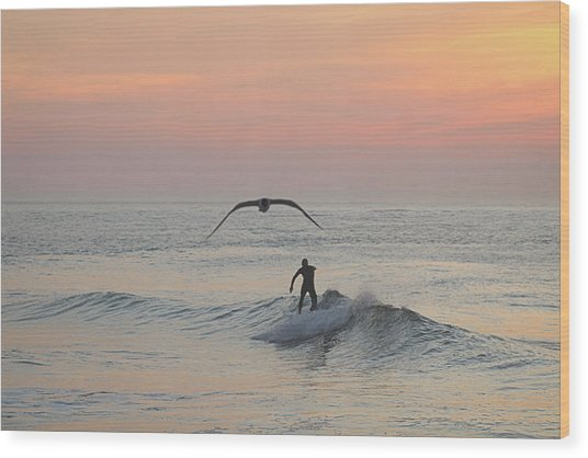 Seagull And A Surfer Wood Print