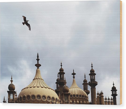 Seagull And Brightonpavillion Wood Print by Darren Lehane