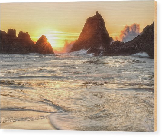 Seal Rock  Wood Print