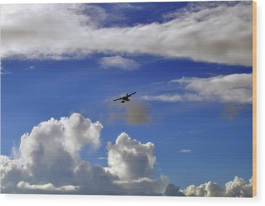 Seaplane Skyline Wood Print