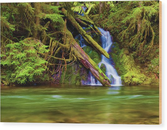 Wood Print featuring the photograph Seasonal Runoff by Dee Browning