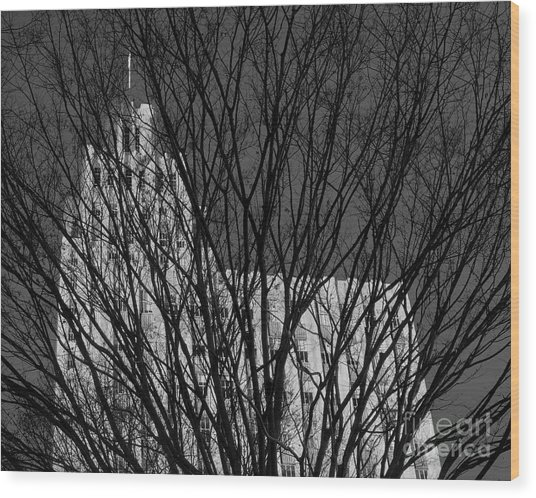 Wood Print featuring the photograph Seasonal View Bw by Patrick M Lynch