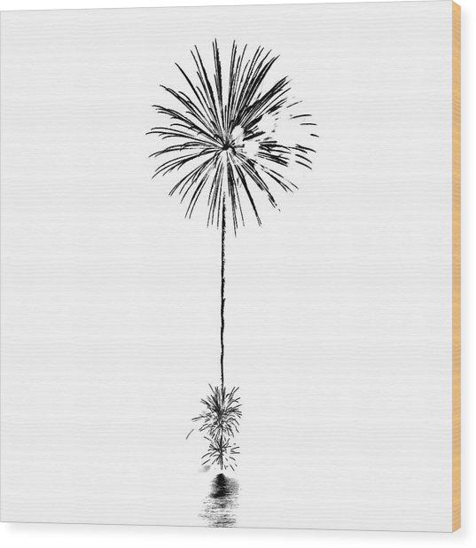 Shades Of Grey Collection Set 03 Wood Print